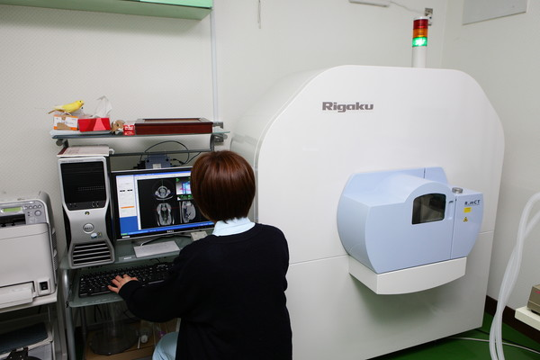 CT検査(しーてぃーけんさ)